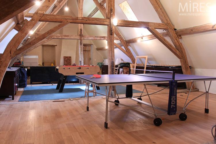 Une Salle De Jeux Dans Les Combles C0573 Mires Paris
