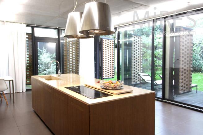 Petit loft sur jardin intrieur C1088  Mires Paris