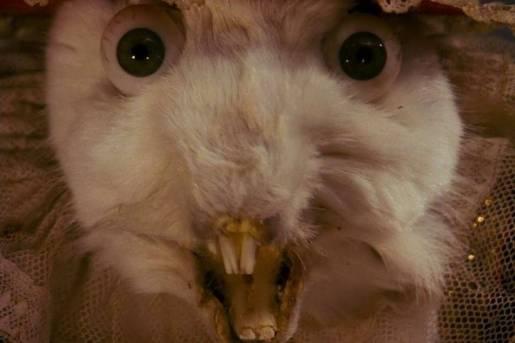 «Алиса в Стране чудес» иеё адаптации: всё страньше и страньше!