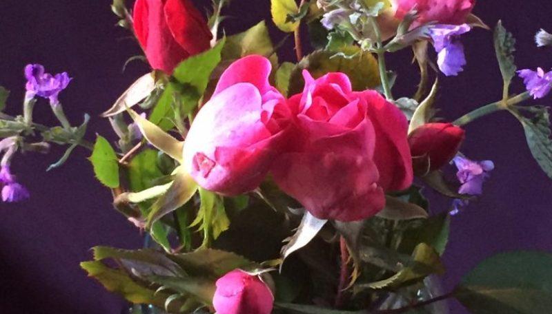 flowers w:background