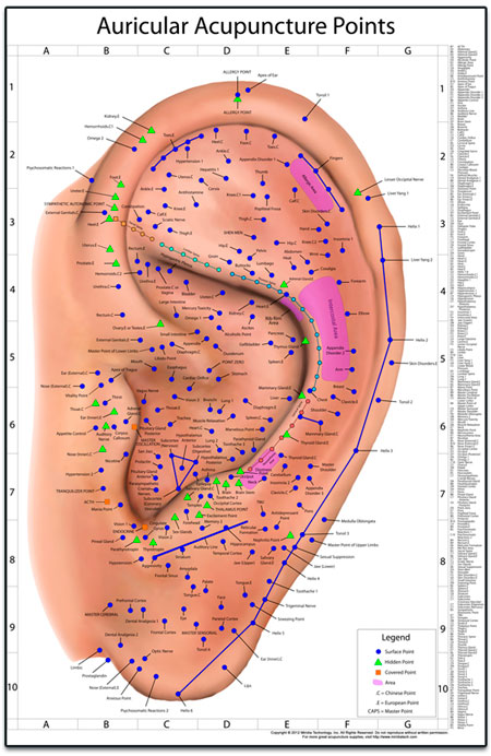 The world's best auriculotherapy chart