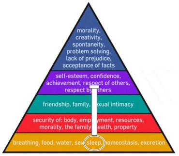 Maslow Anchored need