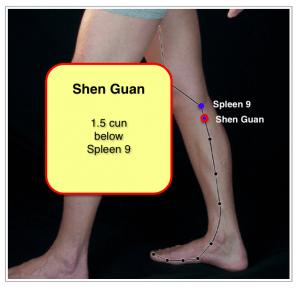 Shen Guan