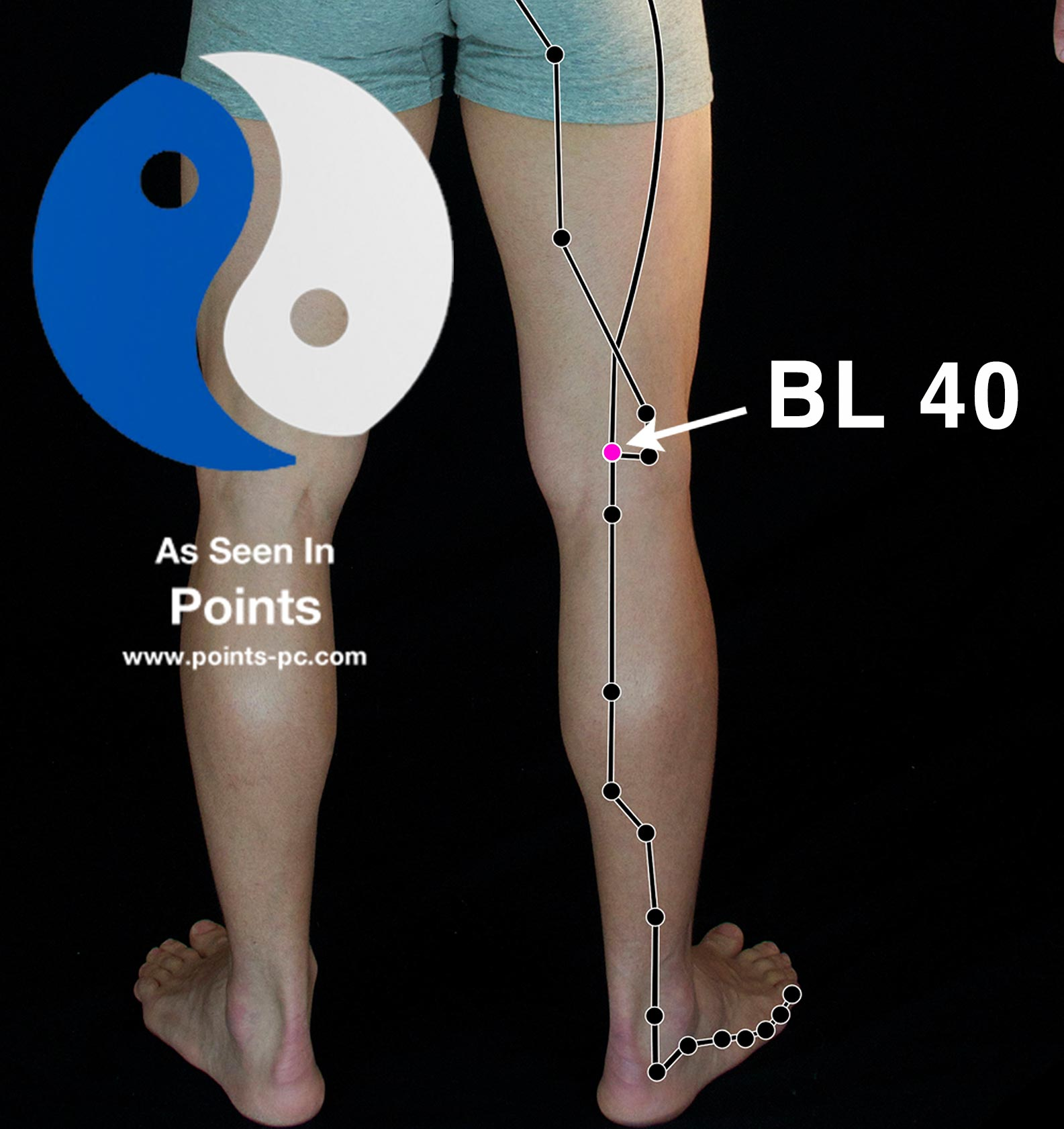Acupuncture Point: Bladder 40 - Acupuncture Technology News