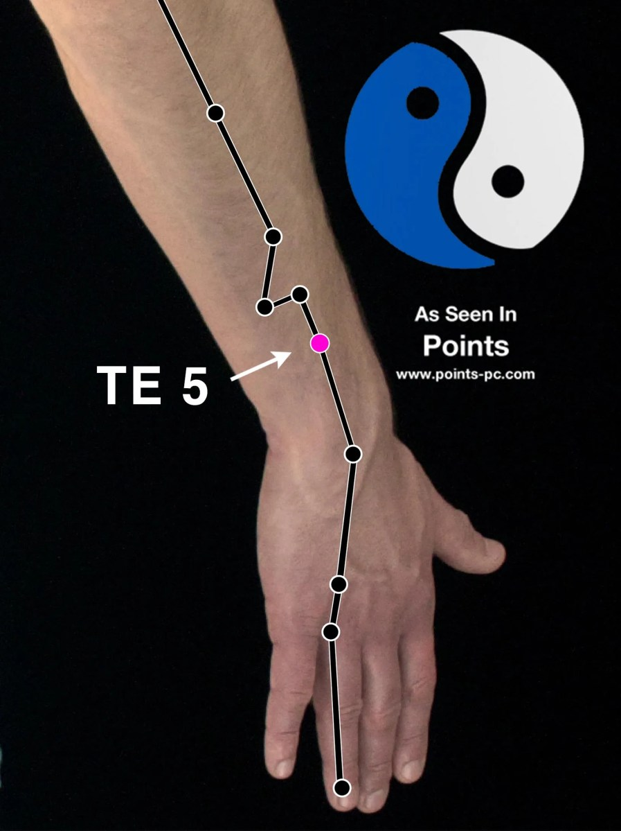 Acupuncture Point: Triple Energizer 5