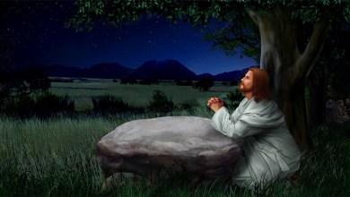 30 Maret 2021, Bacaan Injil 30 Maret 2021, Bacaan Injil Harian, Bacaan Kitab Suci, bacaan Pertama 30 Maret 2021, bait allah, Bait Pengantar Injil, Firman Tuhan, Gereja Katolik Indonesia, Iman Katolik, Injil Katolik, Katekese, Katolik, Kitab Suci, Komsos KWI, Konferensi Waligereja Indonesia, KWI, Lawan Covid-19, Mazmur Tanggapan 30 Maret 2021, Penyejuk Iman, Perjanjian Baru, Perjanjian Lama, Pewartaan, Renungan Harian Katolik 30 Maret 2021, Renungan Katolik Harian, Renungan Katolik Mingguan, Sabda Tuhan, Ulasan eksegetis, Ulasan Eksegetis Bacaan Kitab Suci Minggu, Ulasan Kitab Suci Harian, Umat Katolik, Yesus Juruselamat