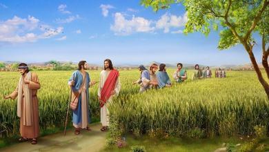 26 April, Injil Hari ini, Bacaan, Bacaan Kitab Suci, bait allah, Firman Tuhan, iman, Injil Katolik, Bacaan Injil Hari ini, Kitab Suci, Komsos KWI, Konferensi Waligereja Indonesia, KWI, penyejuk iman, Perjanjian Lama, Pewartaan, Sabda Tuhan, Ulasan eksegetis, Ulasan Kitab Suci Harian, Yesus Juruselamat, Pekan Suci, Minggu Paskah, Minggu Kerahiman Ilahi,Hari Minggu Paskah III