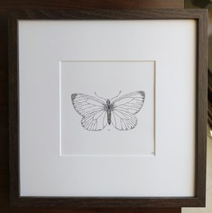 framed calligram butterfly