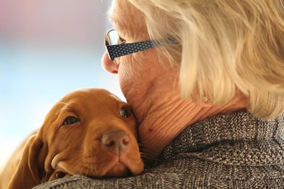 Kućni ljubimci imaju ljekoviti učinak na starije osobe