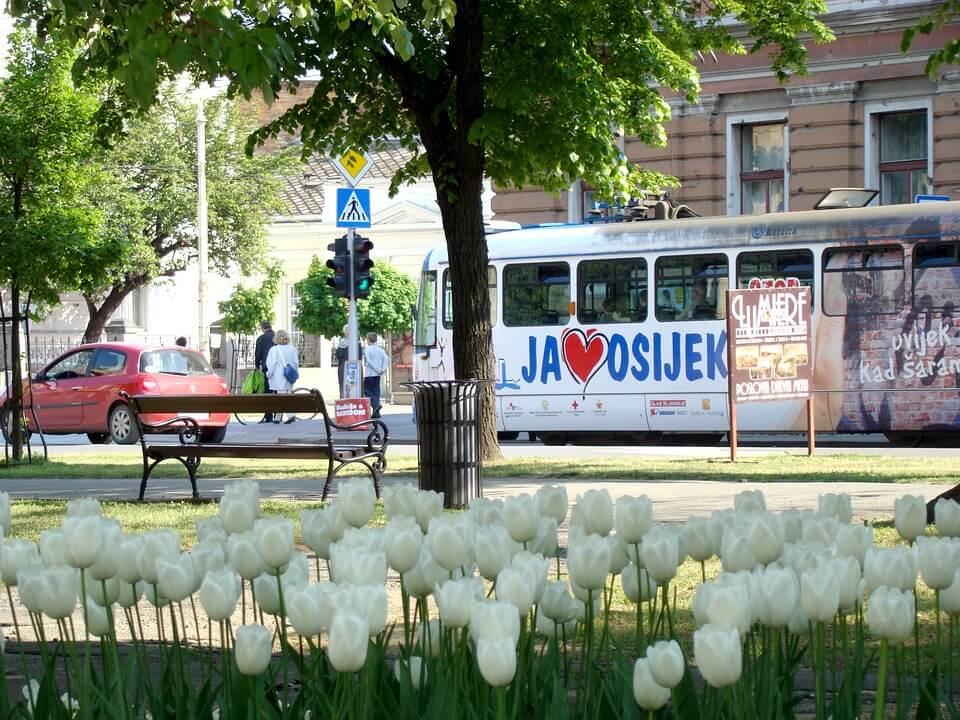 Ekipa iz Osijeka već tri godine uživa u Gradskom dnevnom boravku