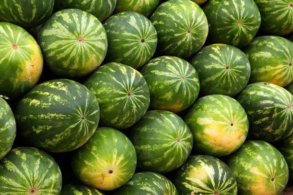 Želite sočnu i slatku lubenicu? S ovih pet trikova nećete pogriješiti pri odabiru