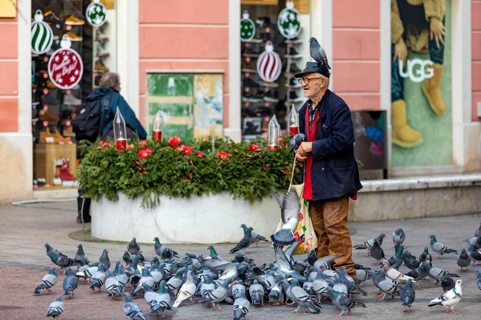 Dobri duh Pule: Popularni umirovljenik opet oduševio fotogeničnim hranjenjem golubova