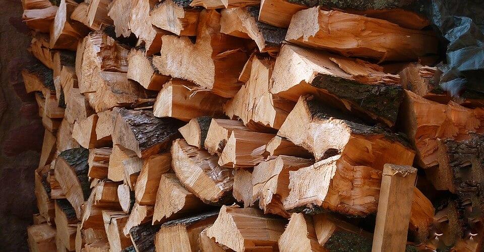 """Umirovljenici sve češće """"kriminalci"""" koji po šumama kradu drva"""
