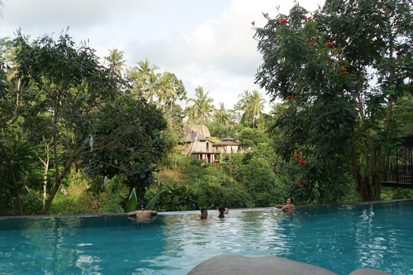 jungle-fish-infinity-pool-bali