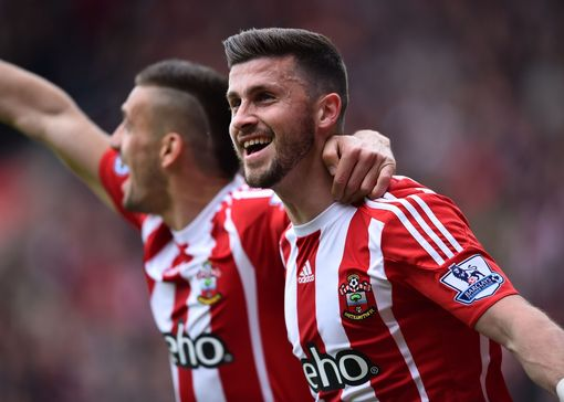 Shane Long celebrates after scoring