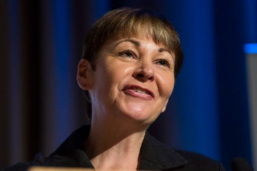 LONDON, ENGLAND - MAY 28: Green Party MP Caroline Lucas speaks at a Diem25 event at The UCL, Institute of Education on May 28, 2016 in London, England. Left-wing politicians and thinkers were today campaigning at the DiEM25 event to stay in the European Union ahead of the EU referendum on the 23rd of June. (Photo by Jack Taylor/Getty Images)