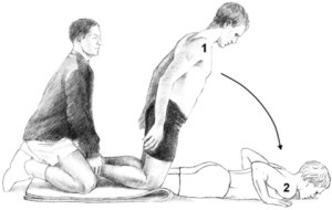 The Nordic Hamstring Curl