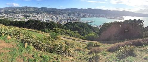 View over Wellington, Mount Victoria, North Island