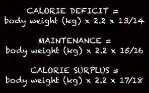 Unwrapping Calorie Surplus and Calorie Deficit