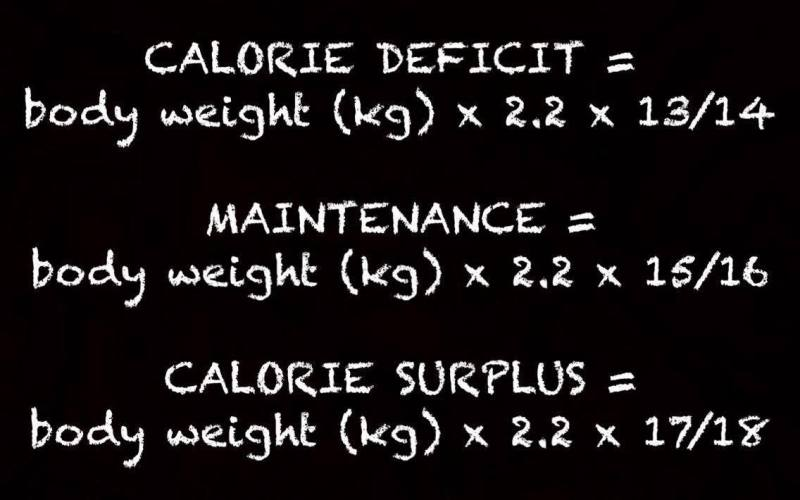 Unwrapping Calorie Surplus And Calorie Deficit Mirror Friendly