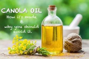 The Hidden Dangers of Canola Oil