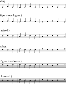That   were all the classical techniques come in trills scales posture and whatnot also voice chart vocal training videos free download learn rh  azonaws