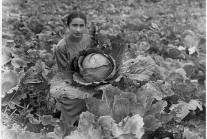 Maria Ensayan (1916-1998), Agronomist, Dilijan, Armenia (Photograph courtesy of Dilijan Centralised Library System)