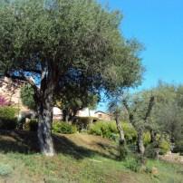 Il giardino del Villaggio Li Ligni Bianchi