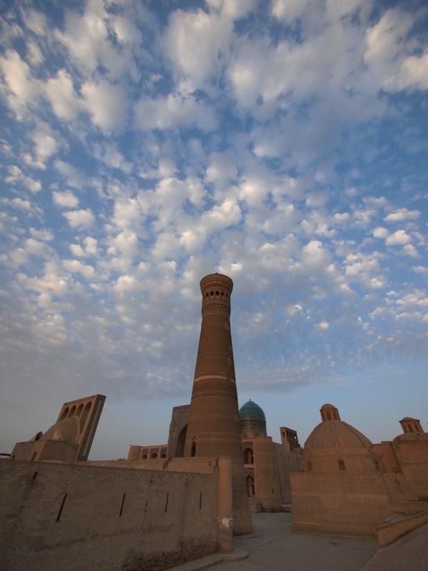 PA063686 Uzbequistan, Bukhara, Central Asia, silk road, ruta seda, Kalyan minaret, minarete de Kalyan