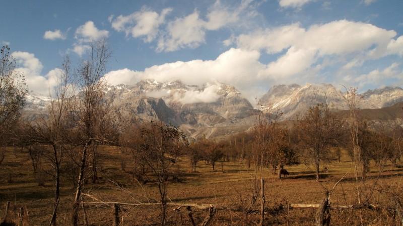 PA294695  Arslanbob, Kyrgyzstan, Kirgistán, walnut forest, bosque nogal