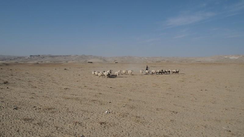 China, taklamakan, desierto, desert, Khotan, Turphan, Yarklan PB145471