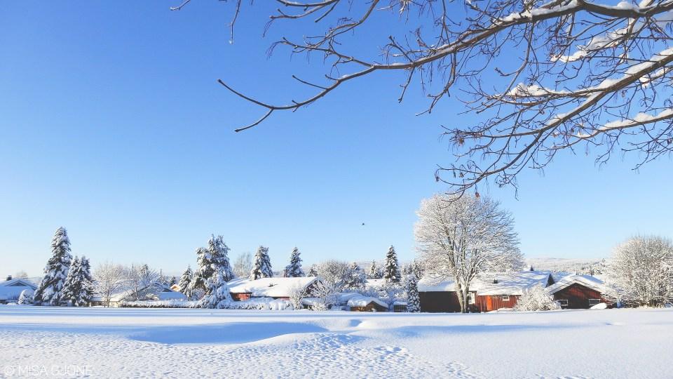 Mùa đông Na Uy 01