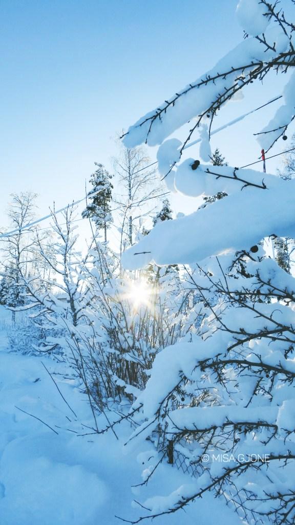 Mùa đông Na Uy 03