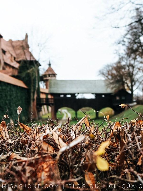 Gdansk ký sự | Phần 2: Ở lâu đài lớn nhất thế giới, ăn ngon phải toát mồ hôi và những kế hoạch đổ vỡ