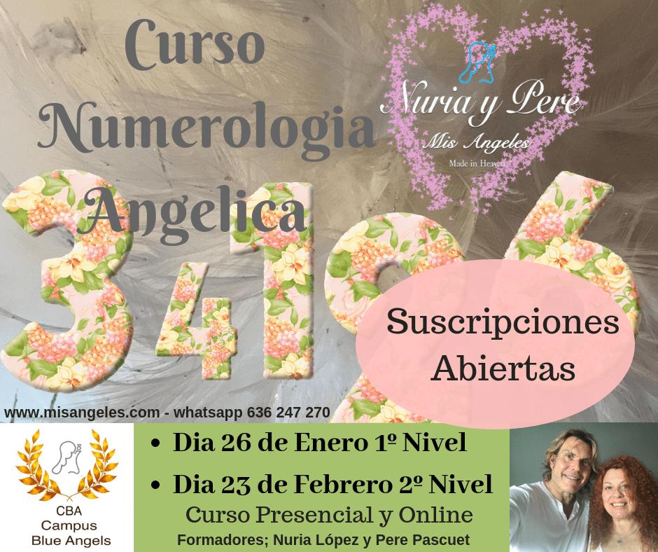 Curso on line de Numerologia Angelica