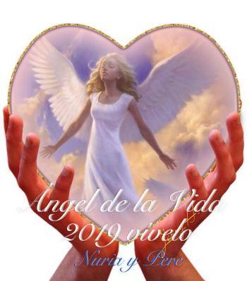 Mensaje Ángel de la Vida