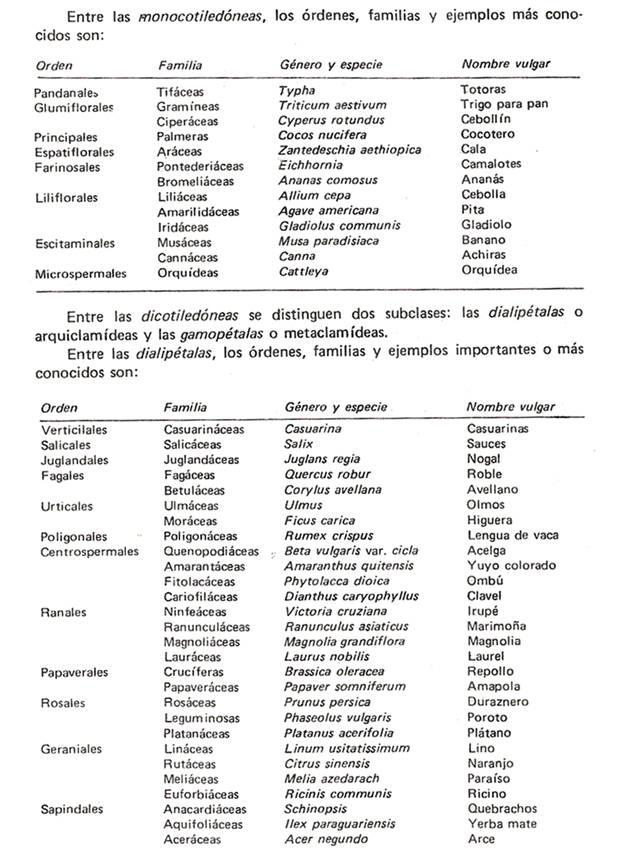 Nociones de Nomenclatura y Taxonoma