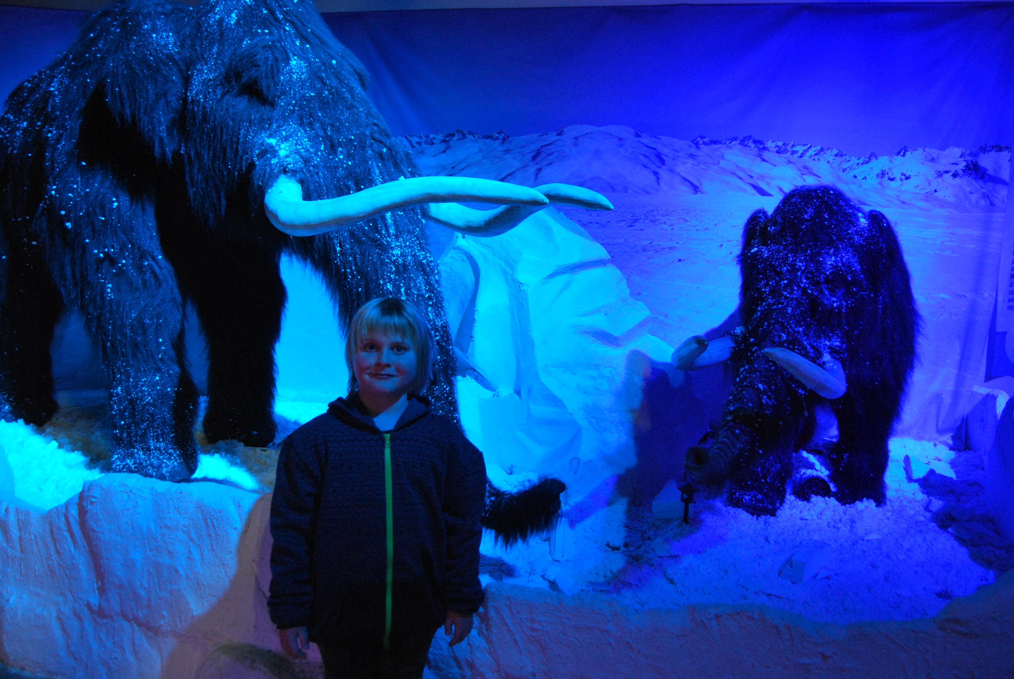 we had so much fun at Snow World!