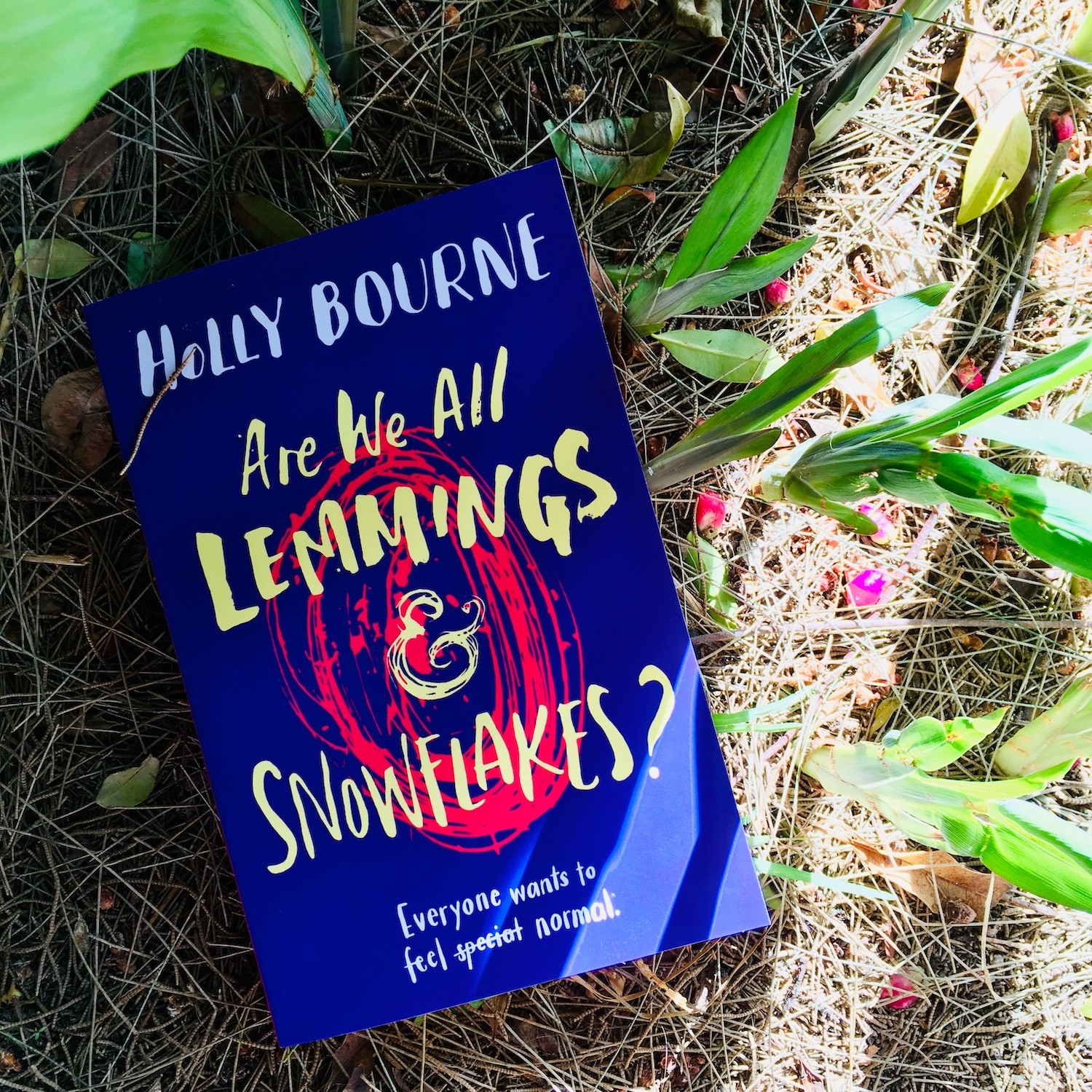 [giveaway] Are we all lemmings and snowflakes – Holly Bourne