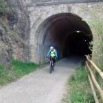 Tunel via verde del Cidacos en Autol