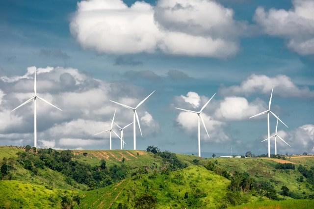 Sostenibilidad: la tendencia de inversión para 2020