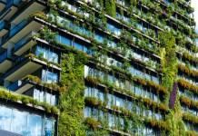 """El futuro de los """"empleos verdes"""" en el mundo laboral"""