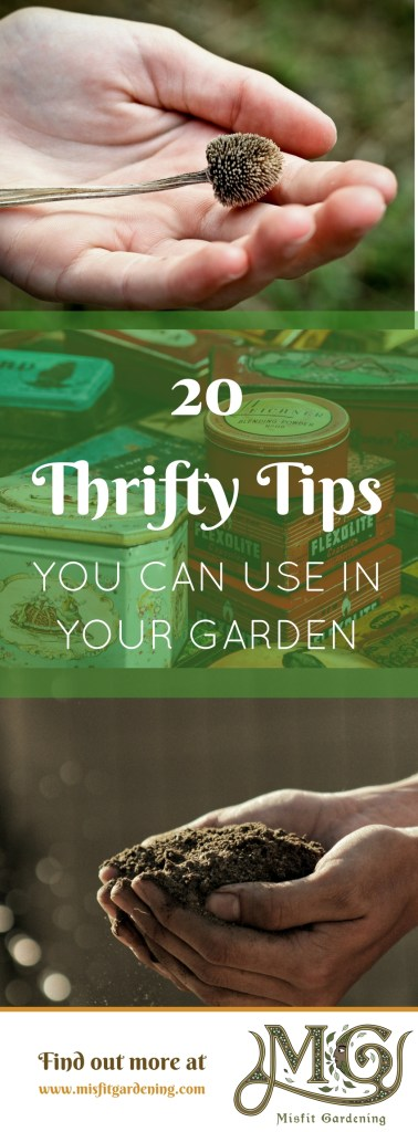Gardening doesn't need to be expensive. Click to learn twenty thrifty tips to help you in your garden or pin this post and save it for later