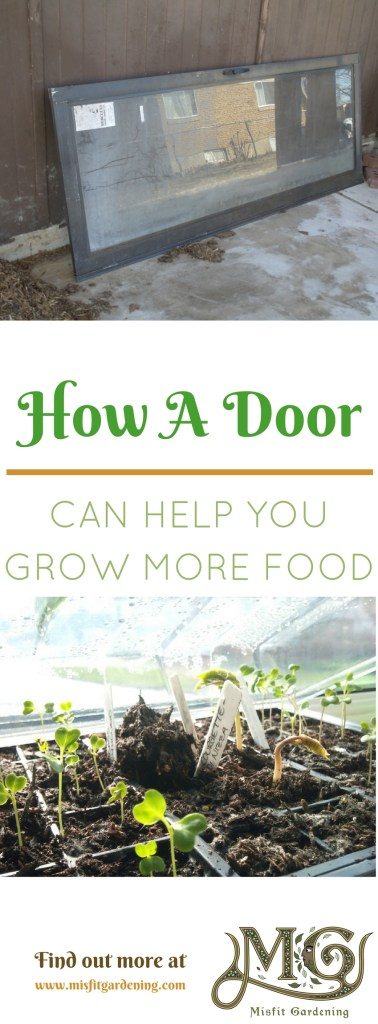 How an old door can be turned into a cold frame. Click to find out how to upcycle a door to grow food or pin it and save it for later.