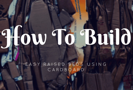 how to build easy raised garden beds using cardboard
