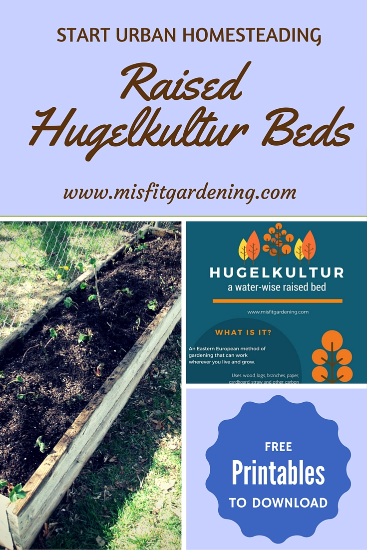 Hugelkultur In A Raised Bed