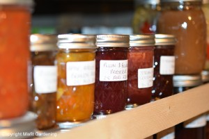 Starting Urban Homesteading Canning and Preserving the Harvest