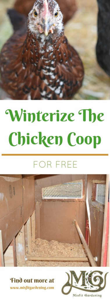 How to winterize a chicken coop for free. Click to find out more or pin it and save for later.