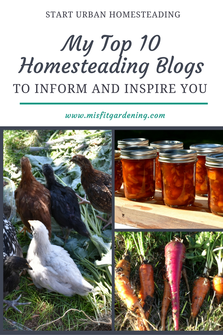 My Top 10 Homesteading Blogs
