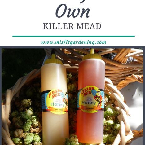 Homebrew your very own mead with killer bee honey